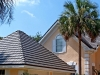 Rustic Aluminum Metal Shingle Roofing in Front of a Palm Tree